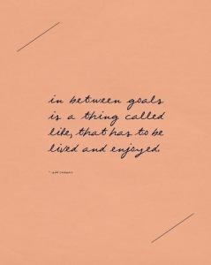inbetween making goals is life