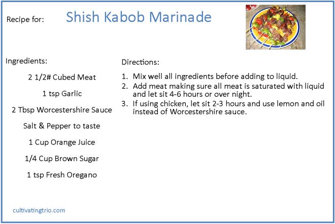 shish recipe2
