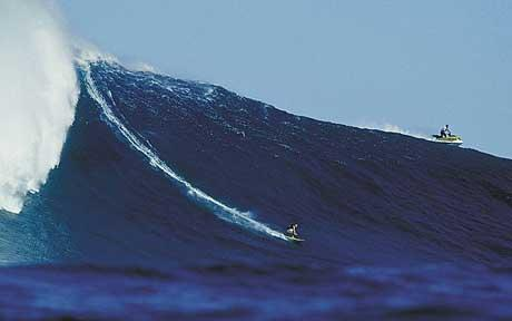 small surfer BIG wave