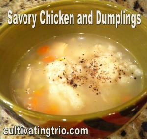 savory chicken and dumplings