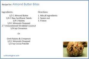 whole30 almond butter bite recipe